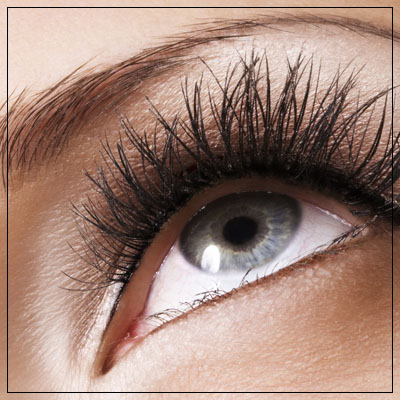 Lash and Brow Tinting Ashburton